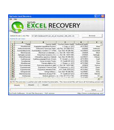 SysTools Excel Recovery Excel回復軟體